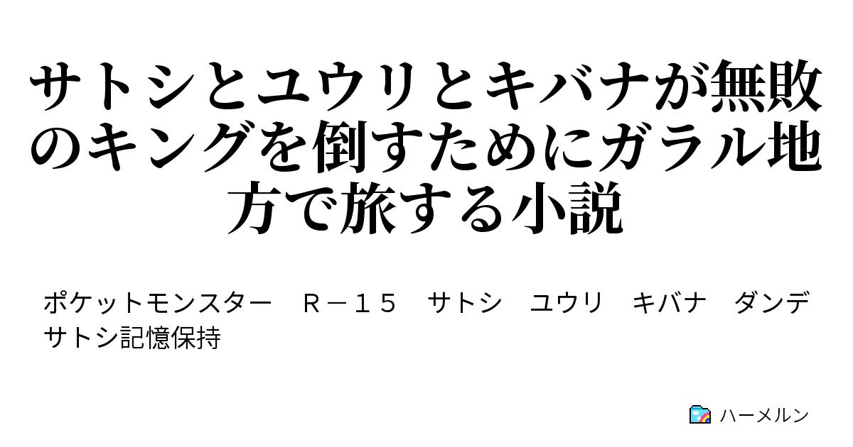 小説 サトシ